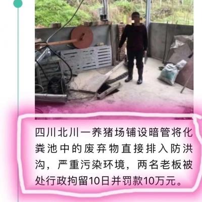 养殖户排放污染问题被罚款