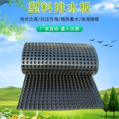 山东排水板-屋顶花园绿化的首选