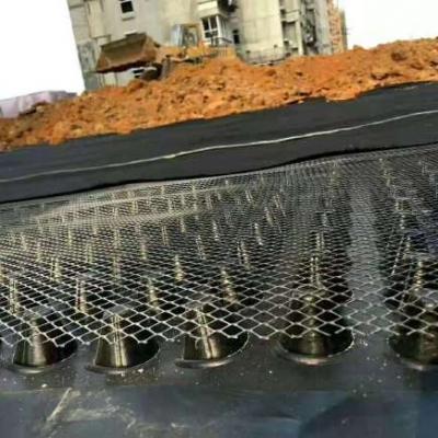 泽瑞土工材料排水板生产厂家直销